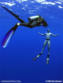 GMOW Underwater Shoot