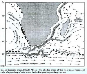 Diagram of currents