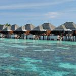 Ayada_Maldives