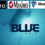 Vertical Blue 2015